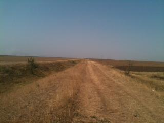Romania -arable land for sale.  Ref R01
