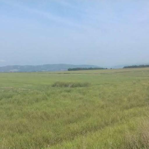 SERBIA - ARABLE LAND FOR SALE........REF SRB 6